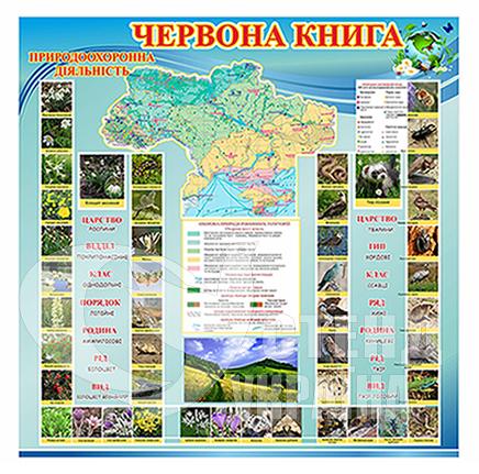 Стенд «Червона книга України»