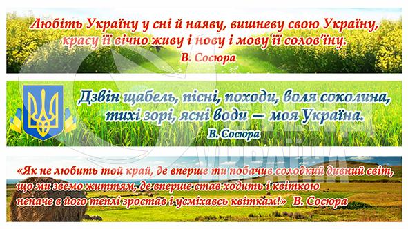 Банери з патріотичними висловами В. Сосюри
